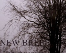 NEW BREED: From The Vaults (Selfreleased 2015)