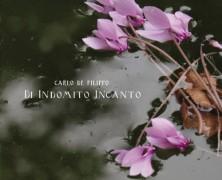 Carlo de Filippo: Di Indomito Incanto (SkullLine 2015)