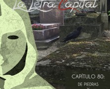 PODCAST CAPÍTULO 80: DE ROCAS Y PÁJAROS